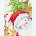 Santa with Reindeer Stocking - borduurpakket met telpatroon Luca-S