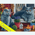 British Shorthair Cats - Diamond Painting pakket - Wizardi Pakket met vierkante diamantjes