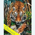 Predator - Diamond Painting pakket - Wizardi