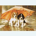 Couple Under Umbrella - kruissteekpakket met telpatroon Luca-S