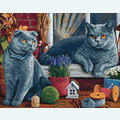 British Shorthair Cats - Diamond Painting pakket - Wizardi