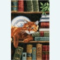 Cat on Bookshelf - borduurpakket met telpatroon Vervaco