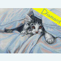 Cat under the Blanket - Diamond Painting pakket - Diamond Art Pakket met vierkante diamantjes