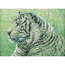 White Tiger - borduurpakket met telpatroon Bucilla | | Artikelnummer: buc-43736