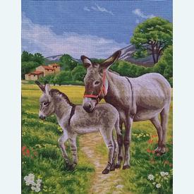 Donkeys - bundel van geschilderd stramien + borduurwol, te borduren in halve kruissteek |  | Artikelnummer: rp-142-514-bundel