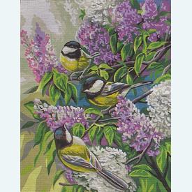 Chickadees - bundel van geschilderd stramien + borduurwol, te borduren in halve kruissteek |  | Artikelnummer: rp-132-135-bundel