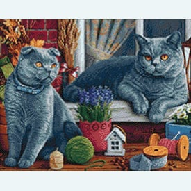 British Shorthair Cats - Diamond Painting pakket - Wizardi | Pakket met vierkante diamantjes | Artikelnummer: wiz-wd2483
