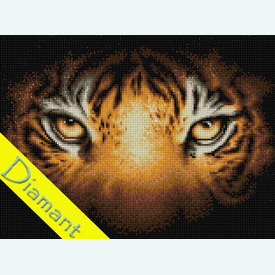 Tiger Look - Diamond Painting pakket - Diamond Art | Pakket met vierkante diamantjes | Artikelnummer: da-az-1827