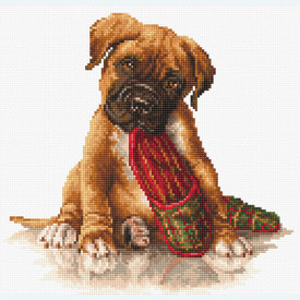Boxer - borduurpakket met telpatroon Luca-S |  | Artikelnummer: luca-b2338