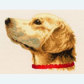 Labrador - kruissteekpakket met telpatroon Vervaco |  | Artikelnummer: vvc-75306