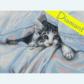 Cat under the Blanket - Diamond Painting pakket - Diamond Art | Pakket met vierkante diamantjes | Artikelnummer: da-az-1680