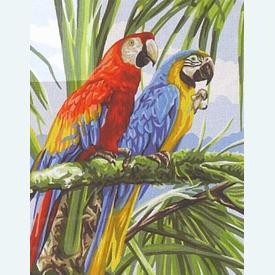 Macaws - bundel van geschilderd stramien + borduurwol, te borduren in halve kruissteek |  | Artikelnummer: rp-132-172-bundel