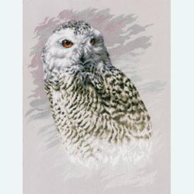 Snowy Owl - borduurpakket met telpatroon Lanarte |  | Artikelnummer: ln-183826