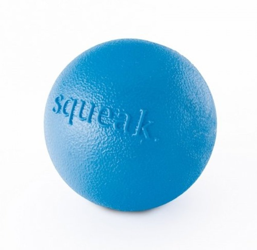 Planet Dog Squeak Ball Blau